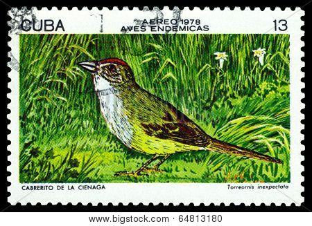 Vintage  Postage Stamp.  Zapata Sparrow.