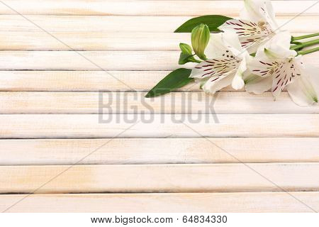 Beautiful Alstroemeria flowers on wooden table
