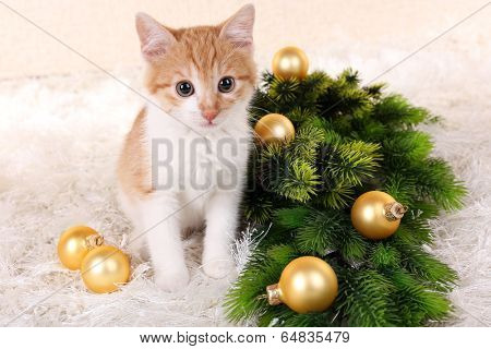Little kitten with Christmas decorations on carpet