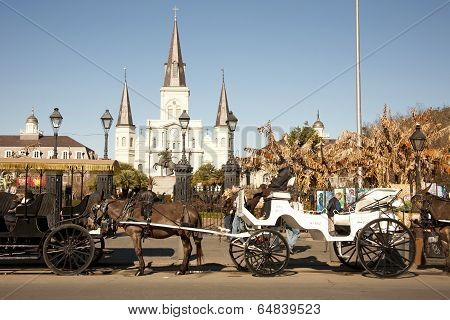 St Louis Cathedral with Mule Carriages