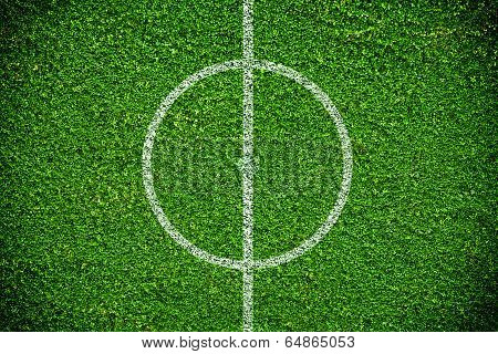 Natural Green Grass Soccer Field