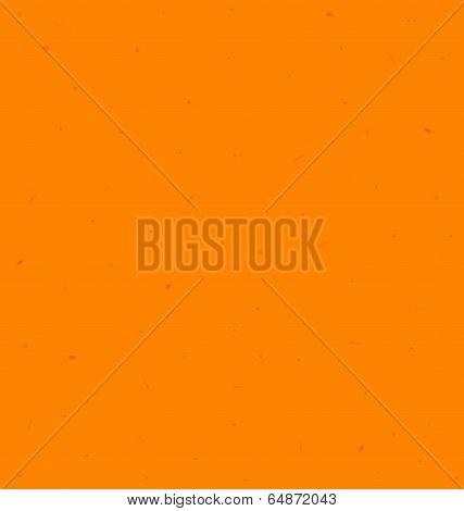 Pumpkin Skin Texture