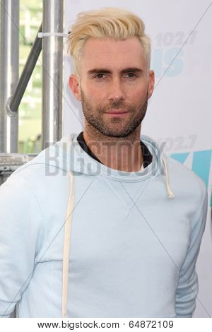 LOS ANGELES - MAY 10:  Adam Levine at the 2014 Wango Tango at Stub Hub Center on May 10, 2014 in Carson, CA