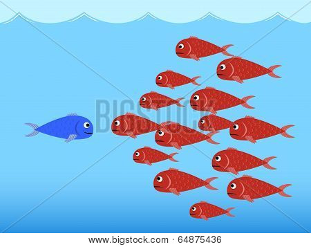 Competition between fishes
