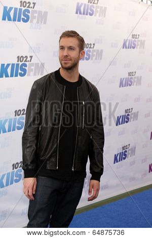 LOS ANGELES - MAY 10:  Calvin Harris at the 2014 Wango Tango at Stub Hub Center on May 10, 2014 in Carson, CA