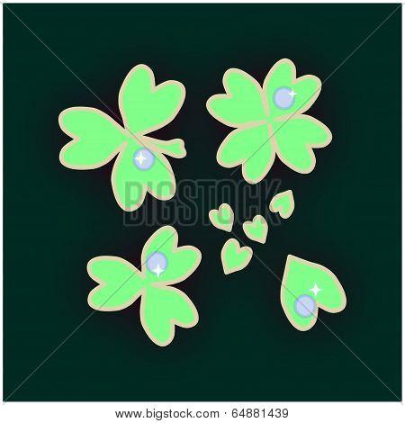 dewy clover