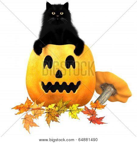 Black Cat Halloween Autumn Leaves