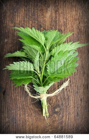 stinging nettle on a wooden background