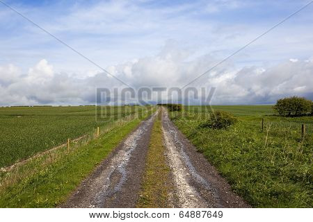 Country Farm Track