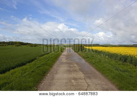 Yorkshire Wolds Bridleway