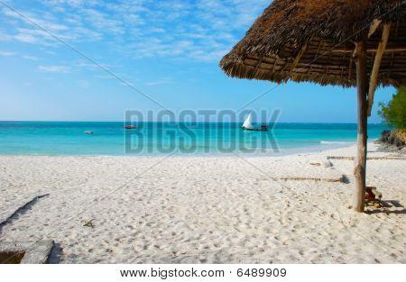 The Coast Of Zanzibar