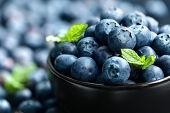 picture of sweet food  - Blueberry antioxidant organic superfood in a bowl concept for healthy eating and nutrition - JPG