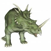 image of herbivores  - 3D digital render of an aggressive dinosaur Styracosaurus or spiked lizard a genus of herbivorous ceratopsian dinosaur from the Cretaceous Period  - JPG