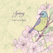 image of nightingale  - floral card with cherry blossoms and bird - JPG