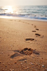 picture of footprint  - Footprints on the beach sand - JPG