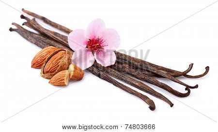 Vanilla with almonds