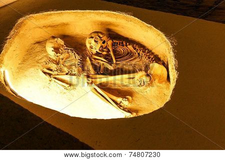 Prehistoric Burial Of Skeleton