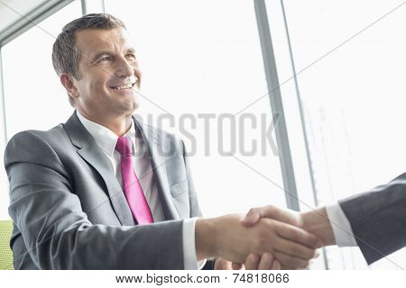 Smiling mature businessman shaking hands with partner in office