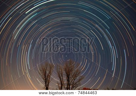 Polaris, star trails and shooting star over the trees