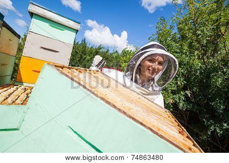 Portrait of female beekeeper in protective clothing working with colleague at apiary