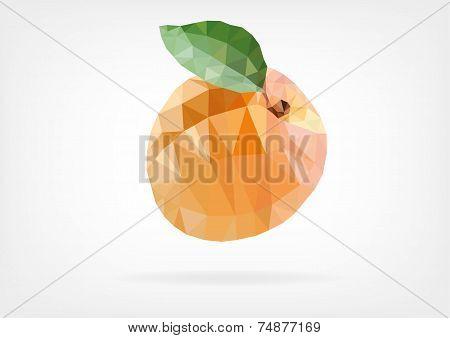 Low Poly Apricot