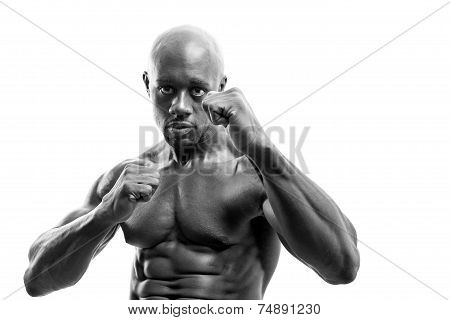 Fighter Fists Up