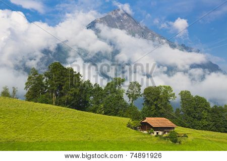 Swiss House in Idyllic summer landscape with mountain on background , Switzerland Interlaken - Lauterbrunnen