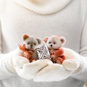 picture of cute bears  - Female hands holding a cute teddy bears with gift - JPG