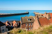 picture of dracula  - Scenic view of Whitby city in autumn sunny day - JPG