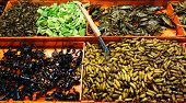 foto of cricket insect  - an image of a fried insects in a market - JPG