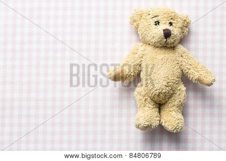 the teddy bear on checkered background