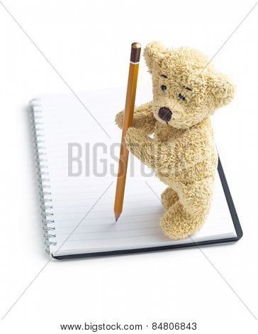 the teddy bear with pencil on blank notebook