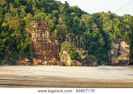 Cliff and rainforest in sand beach