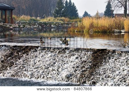 pond with cascades