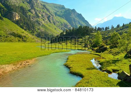 River Emerald