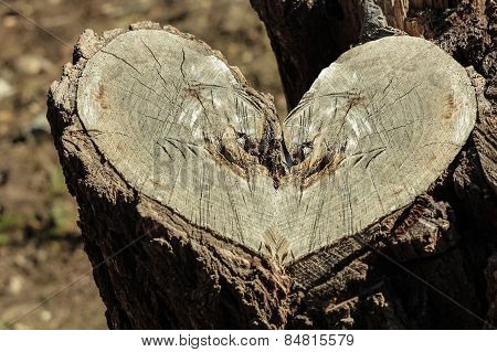 stump, heart shape