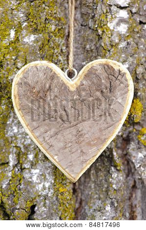 wooden heart on tree bark