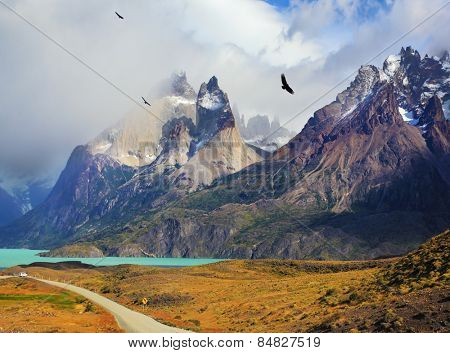 Summer day in the national park Torres del Paine, Patagonia, Chile. Cliffs of Los Kuernos among the clouds. Andean condors fly over the lake Pehoe