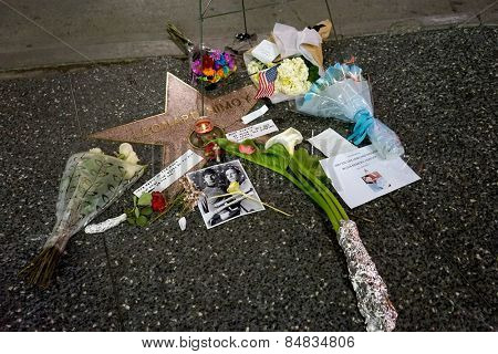 LOS ANGELES - FEB 27:  Memorial Wreath at the Star of Leonard Nimoy on the Hollywood Walk of Fame at the Hollywood Blvd on February 27, 2015 in Los Angeles, CA