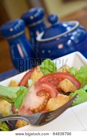 Fresh and colorful tomato and crouton salad