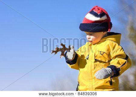 Boy outside examining a leaf