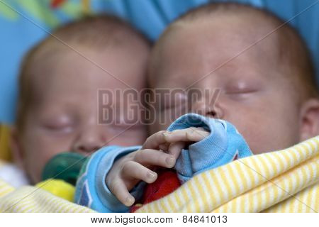 Twin boys sleeping together with focus on tiny hands