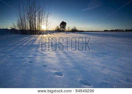 Sunset In Winter.