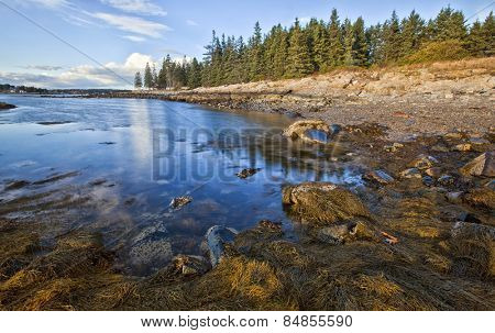 Beautiful shoreline in the New England state of Maine, USA