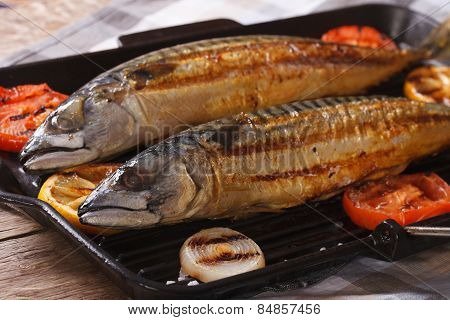 Sea Fish Grilled Mackerel And Vegetables Closeup. Horizontal