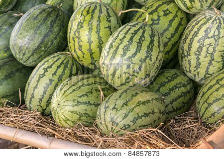 Pile Of Water Melon In Market