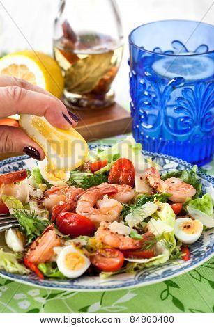 Fresh Shrimps, Eggs And Vegetables Salad