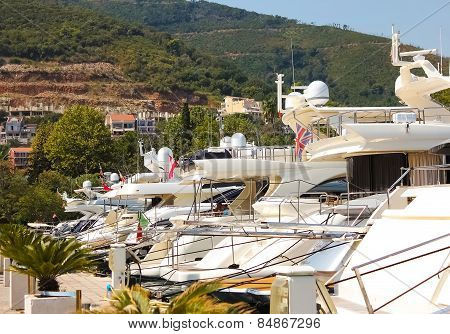 Row of luxury motorised yachts moored in a sheltered harbour