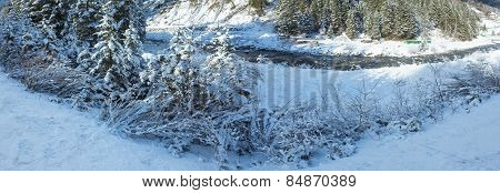 Winter River With Snowy Bushes.