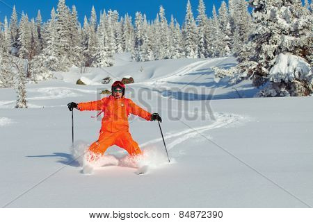 Skier in mountains and sunny day